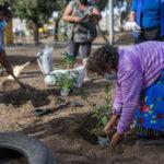 Municipalidad de Arica recupera un nuevo espacio público junto a vecinos de Tacora I
